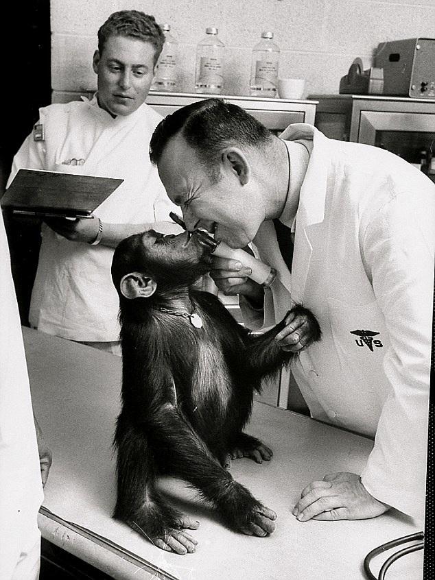 monkey astronaut movie - photo #41